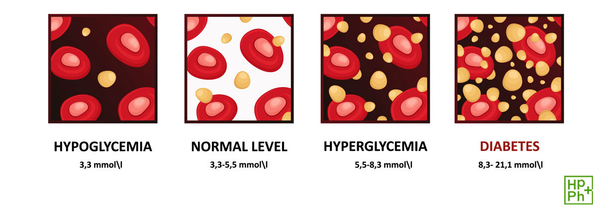 glucose effects in blood