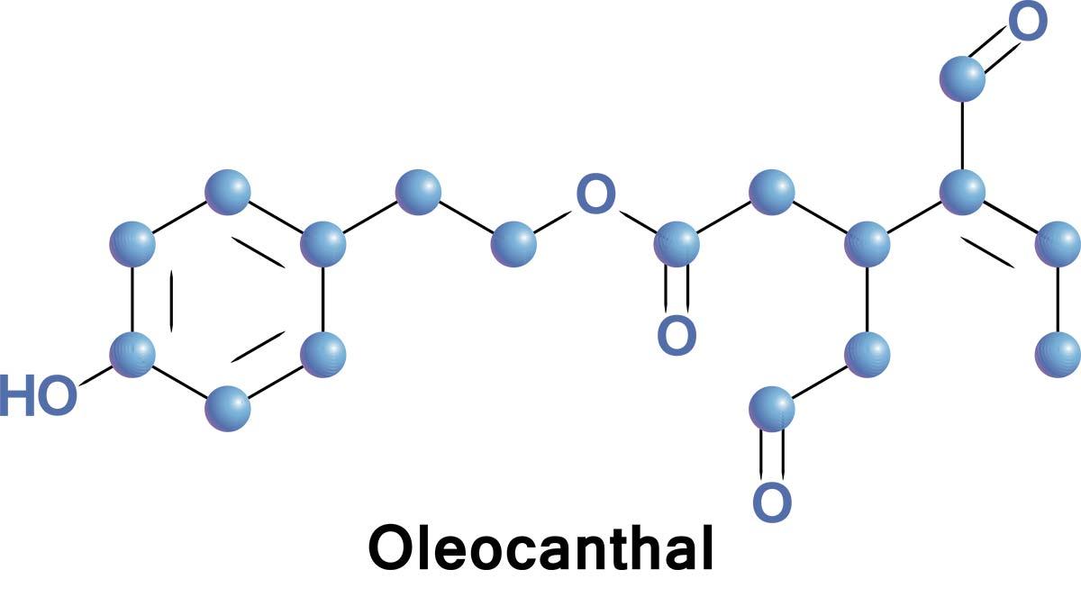 oleocanthal in olive oil